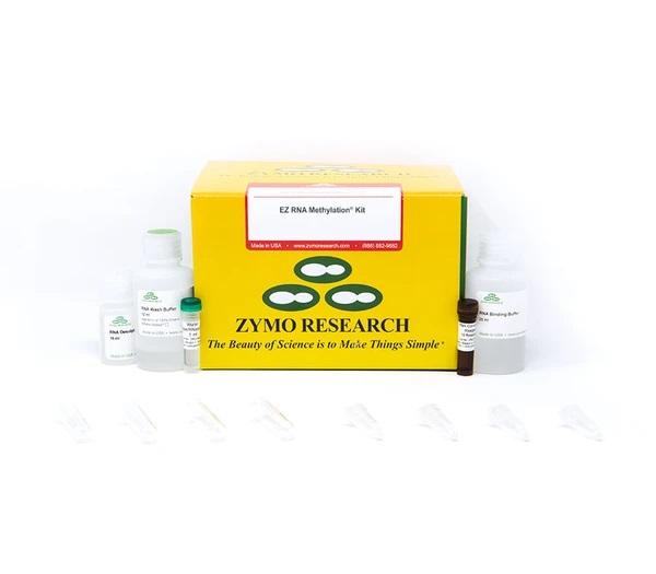 EZ RNA Methylation® Kit