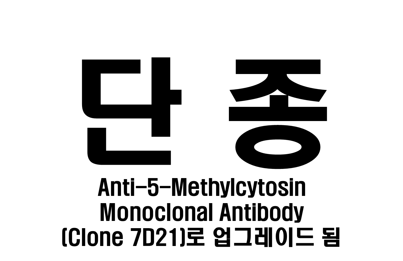 Anti-5-Methylcytosine Monoclonal Antibody (Clone 10G4)